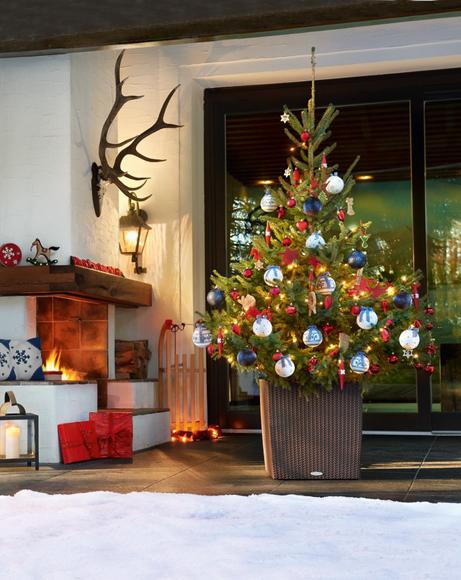 LECHUZA planter CUBE Cottage 50 mocha with Christmas Tree