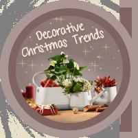Festive Christmas trends
