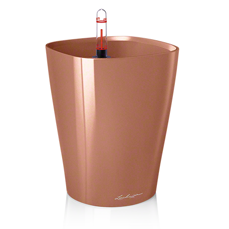 DELTINI rose gold high-gloss All-in-One Set