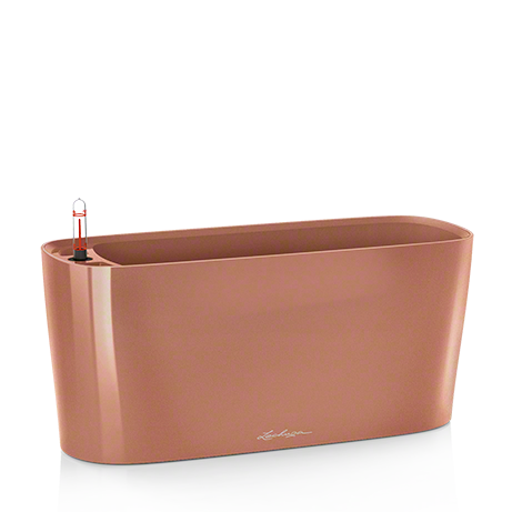 DELTA 20 rose gold high-gloss All-in-One Set