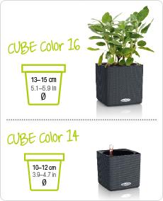 CUBE Color sizes