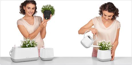 YULA planter use wick