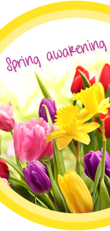 Spring ideas with LECHUZA